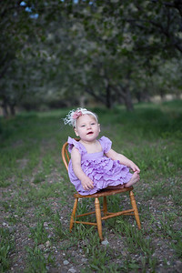 orchard-27