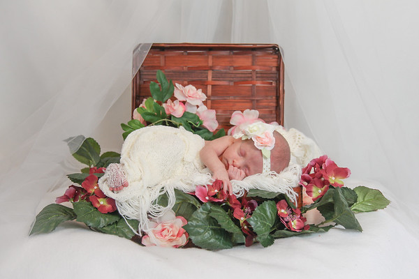 Rosalynn 16 days