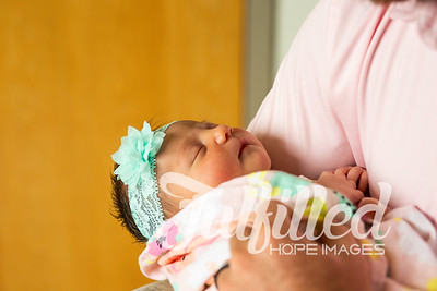Baby Aspyn Newborn Hospital Session (8 of 147)