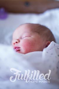 Baby Harmony (2)