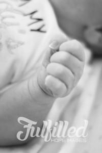 Baby Harmony (5)