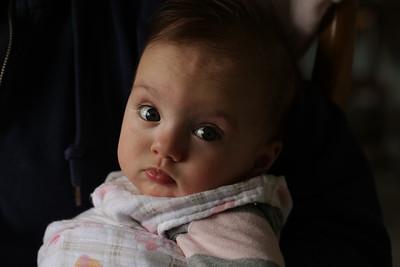 Lorelei 2-4 months