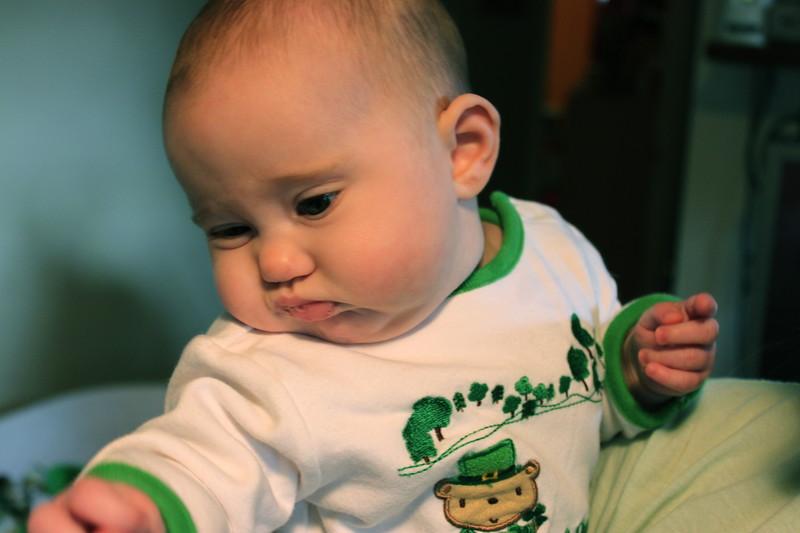 Molly - St. Patrick's Day 2011.