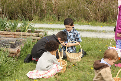 checking eggs with Nick and Zack