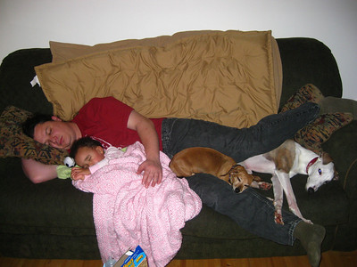 Napping with Uncle Patrick, Henna and Flash