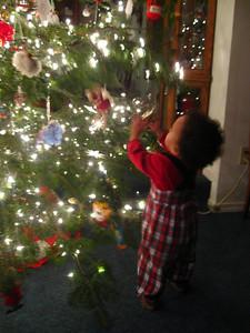 Checking out Bibi's Christmas tree