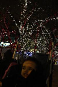 Esther enjoys the Christmas lights