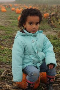 Sitting on the pumpkin!