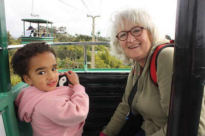 Riding the skytram at the zoo!