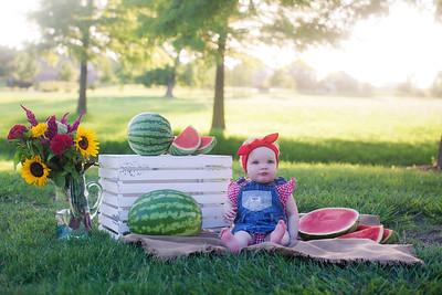 Stella - Watermelon