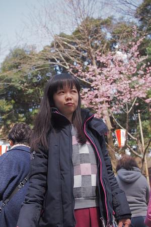 (●´∀`●)ノ。.:*・゜*:.。. 2016 東京看花花 ❀ SAKURA