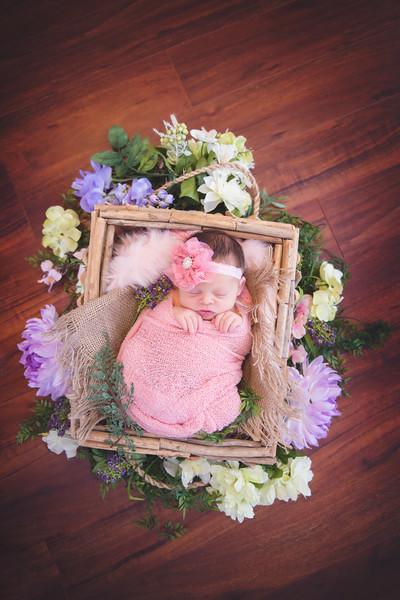 Baby Hannah June 2018