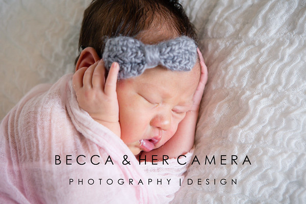 Amy Cook | Newborn