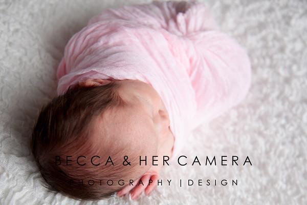 Avery Rosales | Newborn