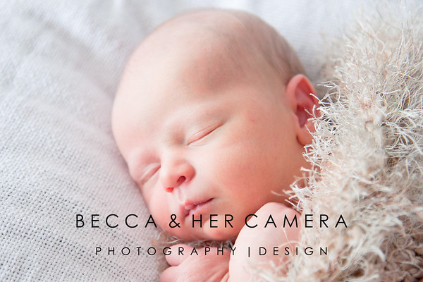 Lucas Huntley | Newborn