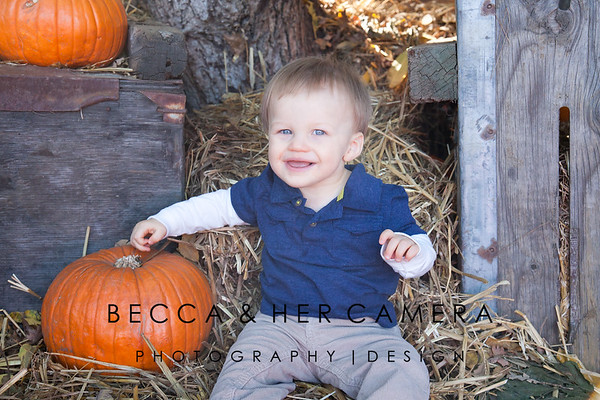 Wyatt Hopper | 1 Year