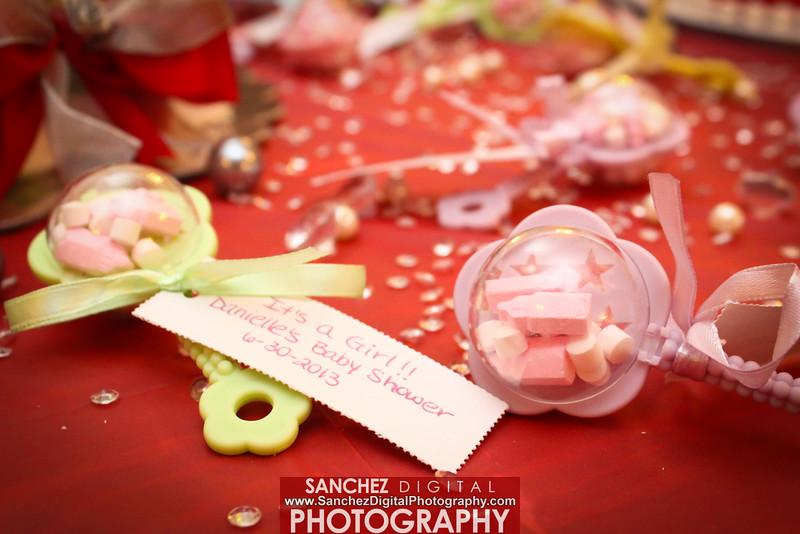 (c)2015 Sanchez Digital Photography Bookings 201-491-1129