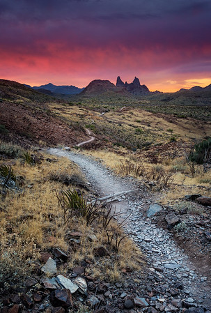 Mule Ears Trail - Big Bend National Park