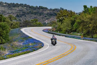 Spring wildflowers along Hwy 16 near Llano, Texas