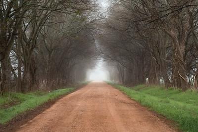 CR 302, Falls County, Texas