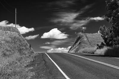 Backroad near Colfax, WA