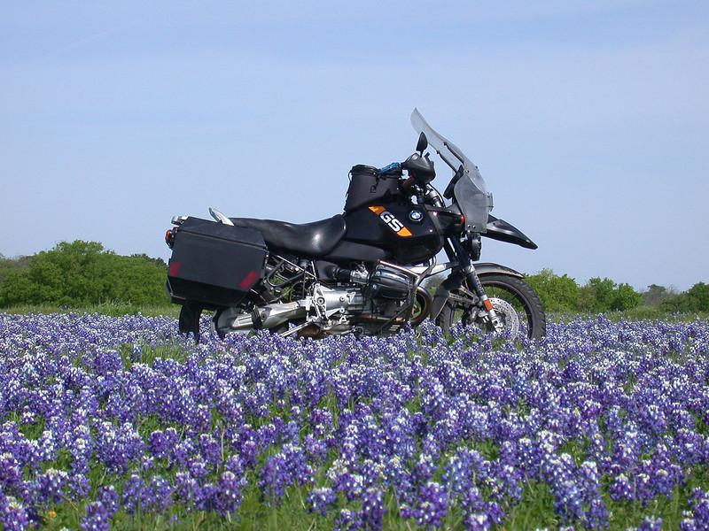 Texas Bluebonnets<br /> Carl's Corner, Texas