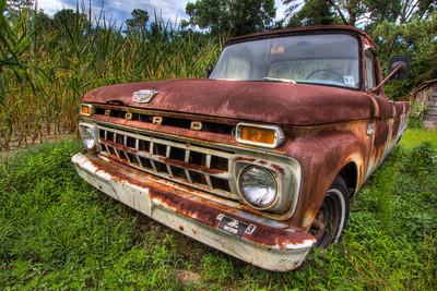 1965 Ford F-100, Backswamp, North Carolina, USA