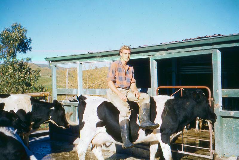John Barns-Graham, Old Cowshed Hexton Gisborne 1960s.