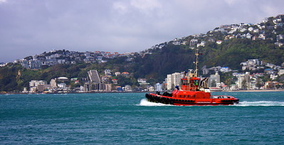 Wellington Harbour Tug Tiaka Sep 2010