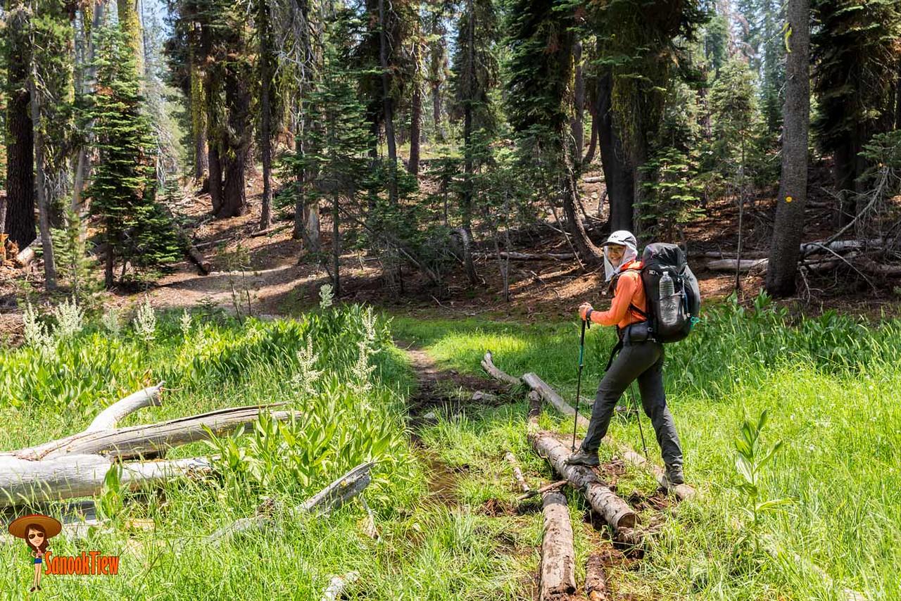 Backcountry Camping ที่ Lassen Volcanic National Park เดินจาก Summit Lake South ผ่าน Kings Creek ชม Lassen Peak ชิวที่ Echo Lake แคลิฟอร์เนีย อเมริกา