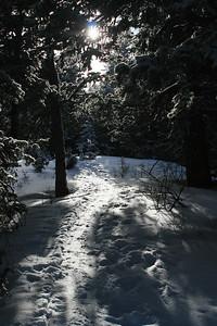 lightened path