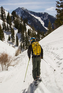 Ski down narrow drainage  Butler Fork
