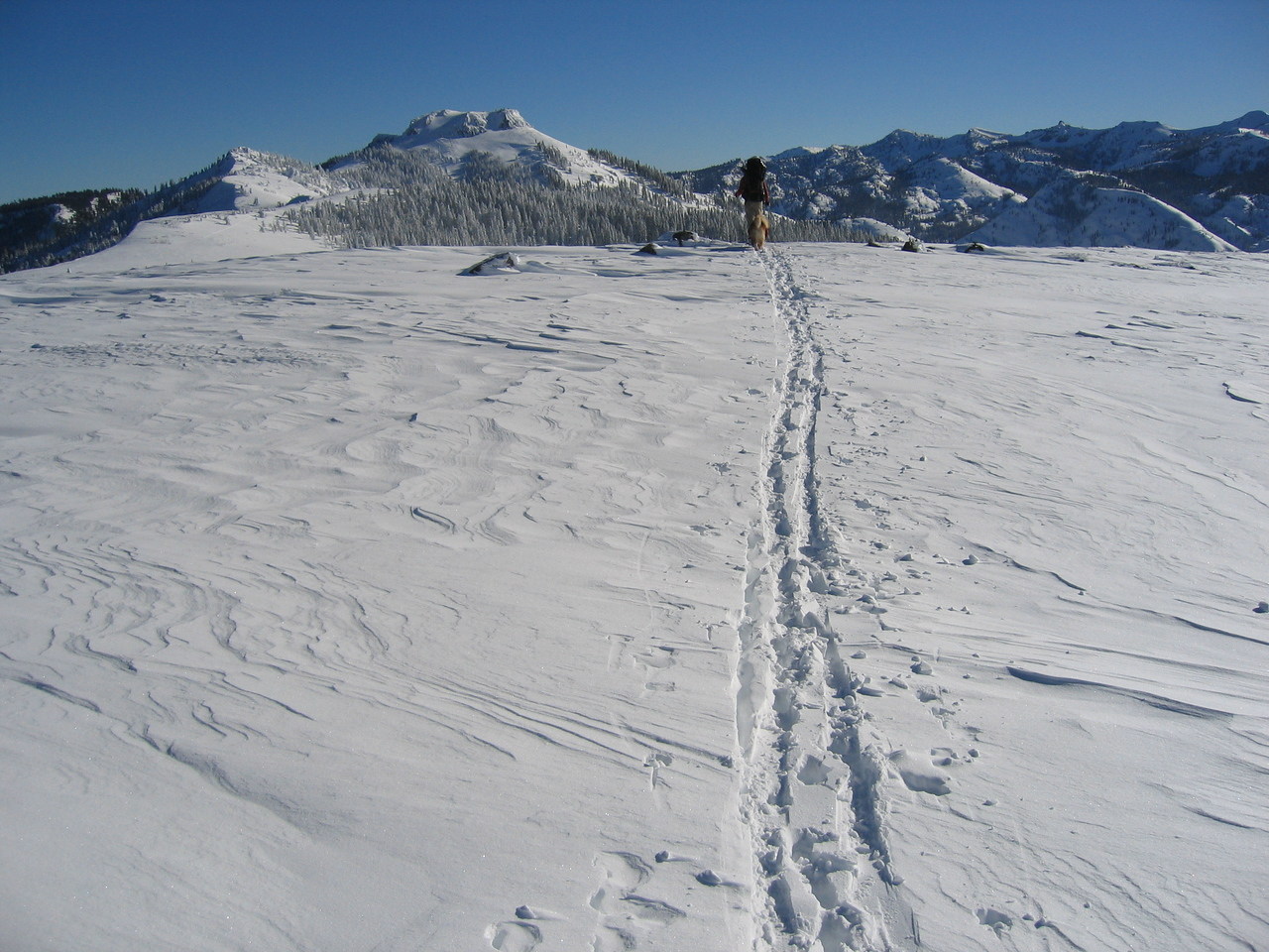 Matty making tracks out to Benson with Tinker Knob in the background.