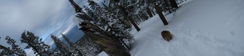 07 - Ski 22, Sq 17, Jake's with Alexis dawnP [11] 4 images, STA_3466 - STD_3469 - 10580x2455 - SCUL-Smartblend