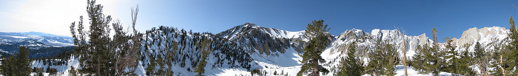 Tioga Pass - The Coke Chute is the big chute to the right of the tree... NOT the left.