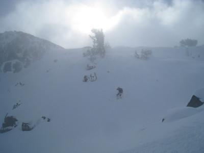 2012 (winter) -2013 (spring)