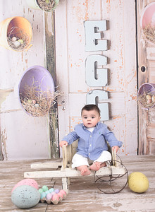 Eggs Backdrop and Shabby Wood Floor