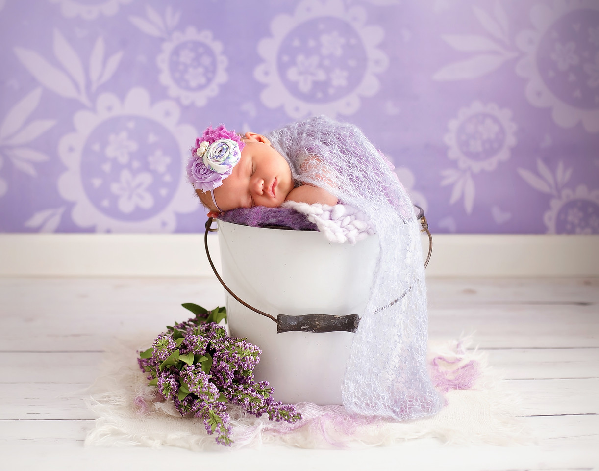 Purple Flowers & Gray Wood Floor