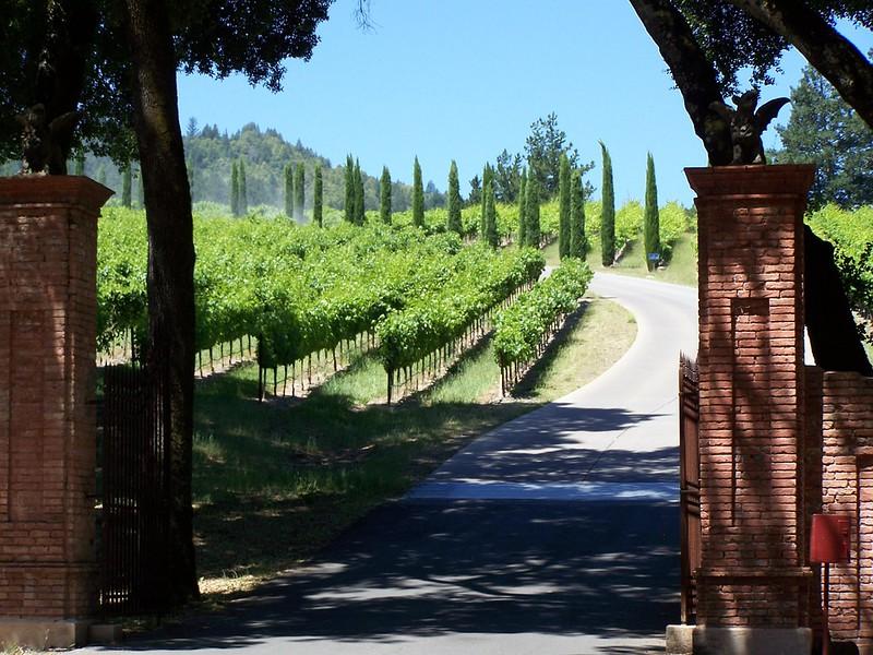 Winery Napa Valley California Wine Country