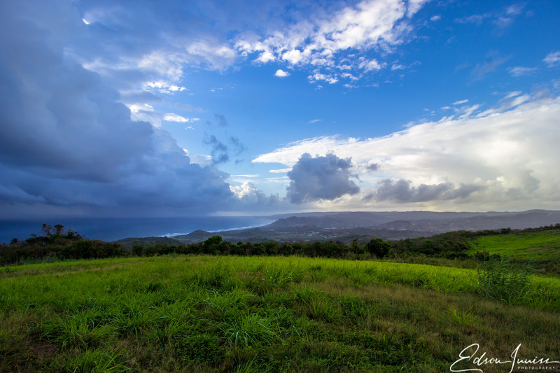 Barbados - Cherry Tree Hill