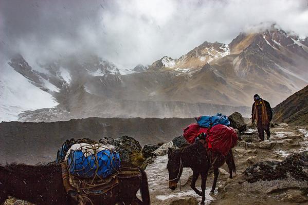 Andean Hustle