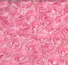 Baby Pink Rosette Background