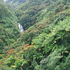 Tropical-Ravine-Horizontal
