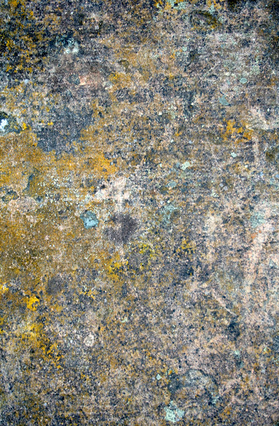 Grunge Brushed Concrete-02
