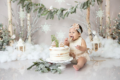Lovely Winter Wonderland Cake Smash