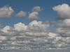Cumulus clouds (6)