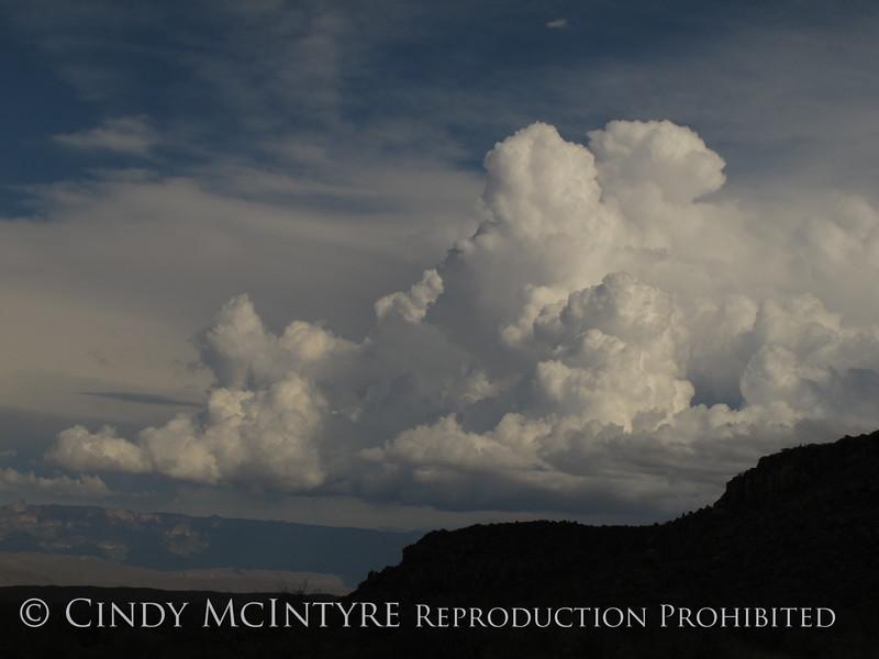 Cumulus clouds (1)
