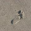 IMG_5851_Sand
