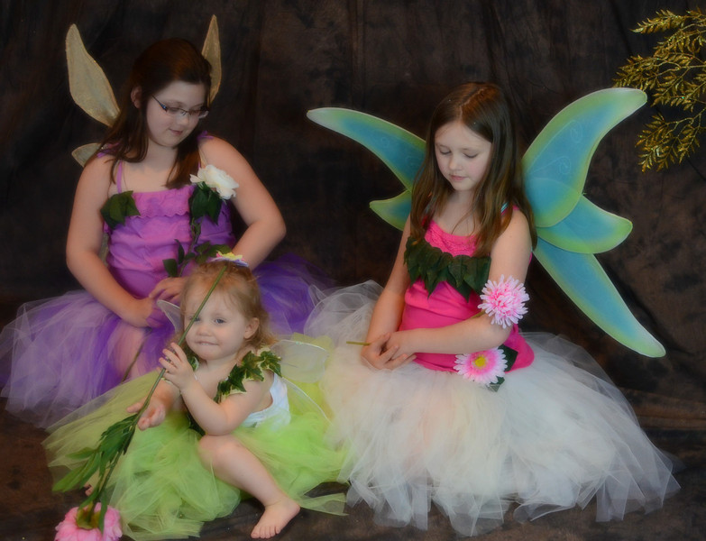 "Spring fairy costumes.  (So sweetly modeled by Drew, Emma and ""Beezus.""  Purple costume is Girls Plus size 18.  Pink costume is Girls size 10-12.  Green costume is Toddler Girls size 4T.)"