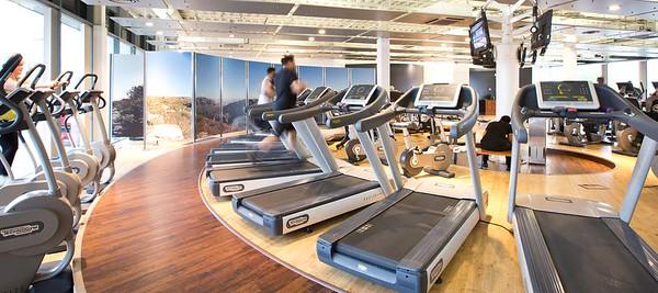 Gym Treadmills